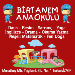BİRTANEM ANAOKULU 300x250