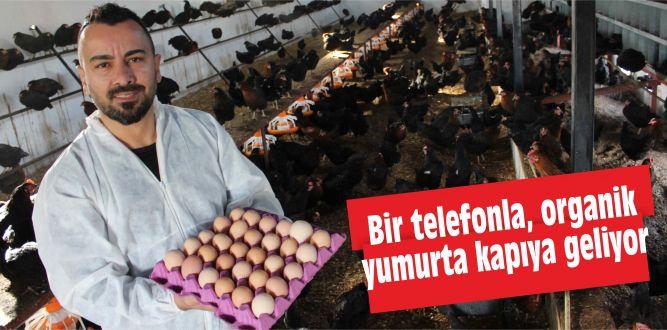 Bir telefonla, organik yumurta kapıya geliyor
