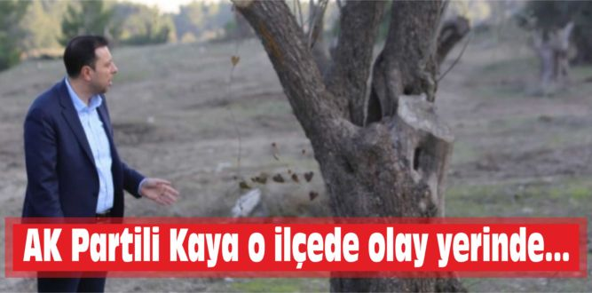 AK Partili Kaya o ilçede olay yerinde…