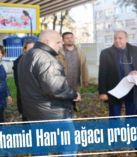 Sultan Abdülhamid Han'ın ağacı projeyi değiştirdi