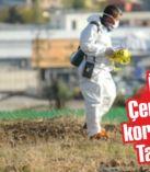 İzmir'in Çernobili'nde korkutan iddia: Tam 219 kat