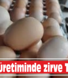 Yumurta üretiminde zirve Torbalı'nın