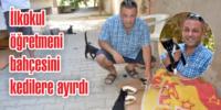 Yüzlerce kedi ve köpeği tedavi ettirdi