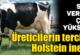 Üreticilerin en fazla tercih ettiği inek