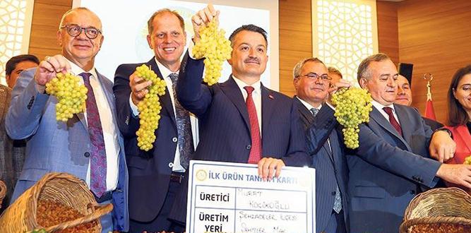 Kuru üzümün taban fiyatı 10 TL